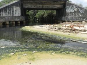 Foz do rio Pimenta