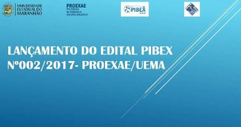 pibex2017