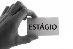 estagiovivencia-e1509543779934