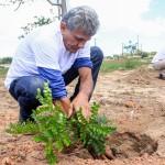 Objetivo da ação é realizar o plantio de dez mudas em cada reencontro anual da turma. Foto: Luís Paulo.