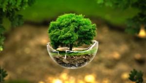 Cursos de Especialização em Gestão Ambiental e em Engenharia Sanitária e Controle Ambiental. Foto: Divulgação.