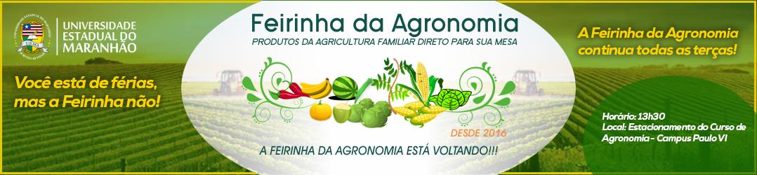banner-feirinha_2