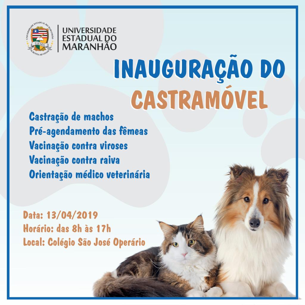 castramovel_feed