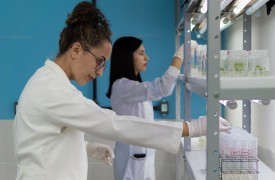 Pesquisadores da Uema realizam estudo para desenvolvimento de protocolos para produção de mudas micropropagadas de espécies frutíferas