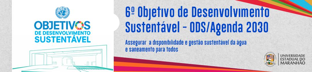slide-6o-Objetivo-de-Desenvolvimento