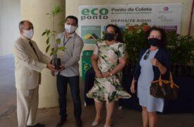 Projeto Café Sustentável viabiliza entrega de mudas de ipês rosas e amarelos a servidores do Ministério Público do Maranhão